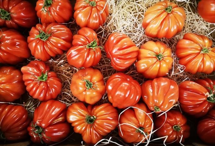 Tomate côtelée France