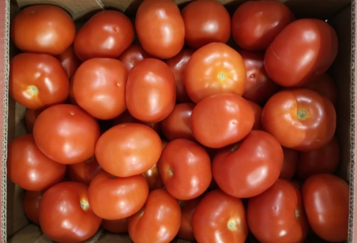 Tomate ronde France