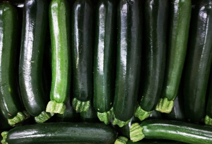 Courgette Provence