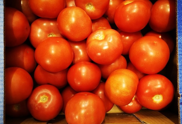 Tomate Provence