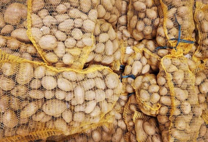 Pomme de terre Monalisa AVEYRON